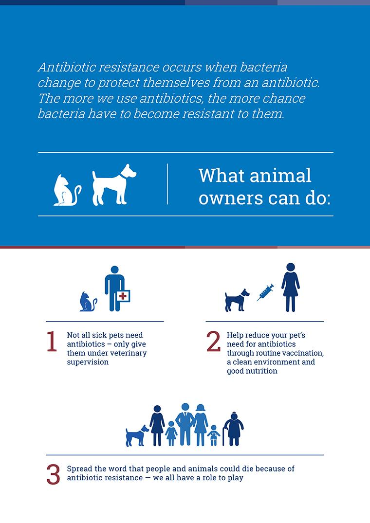 Infographic - What animal owners can do